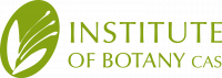 Institute of Botany